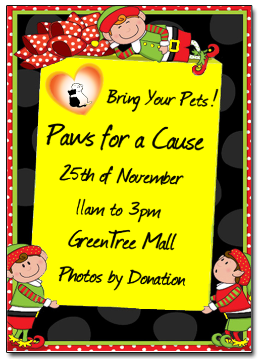 paws for a cause4