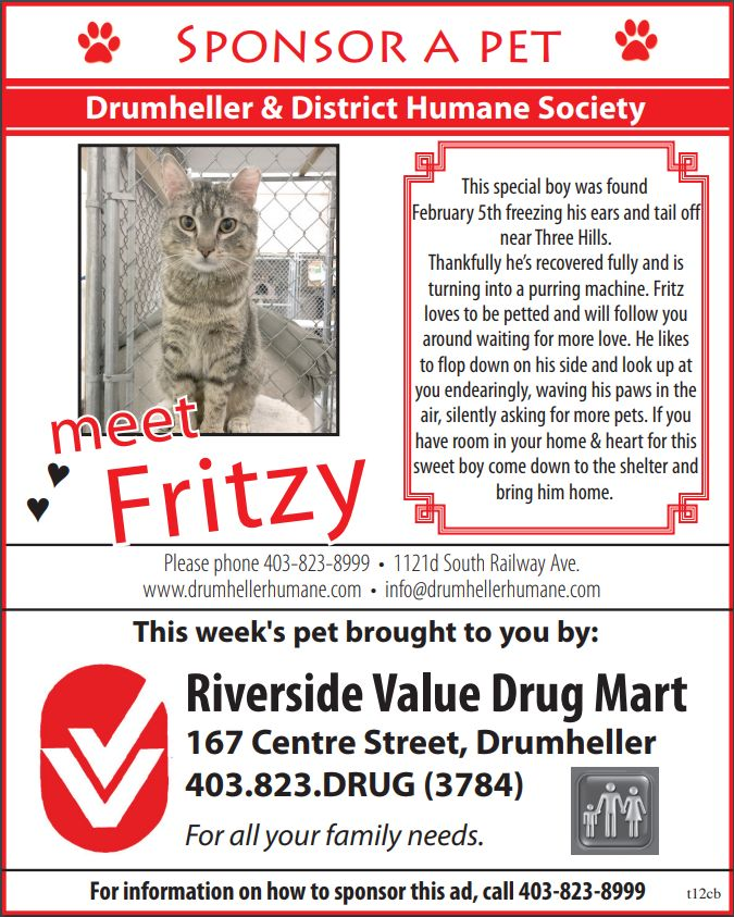 Fritzy - Pet of the Week