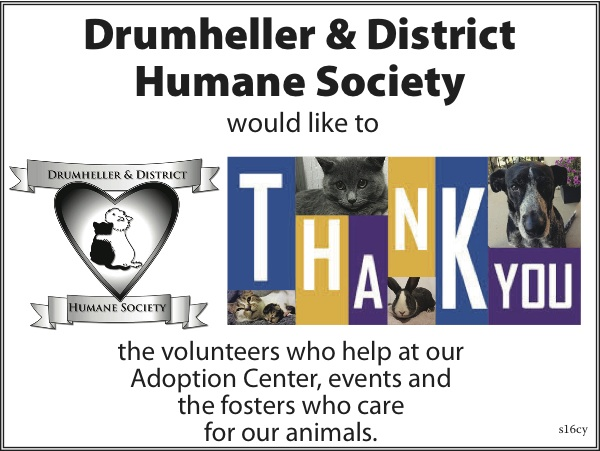 Humane Society volunteer 2018